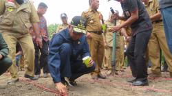 Kunker ke Wajo, Gubernur Sulsel Tanam Jagung Bibit Indonesia-Jepang