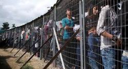 Politikus Swedia Ditangkap atas Kasus Perdagangan Manusia