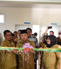 Wakil Wali Kota Resmikan Unit Endoskopi RSUD Padangsidimpuan