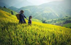 Kantor Pertanahan Simalungun Bentuk Tim Gugus Tugas Reforma Agraria
