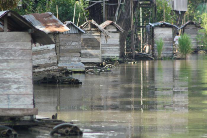 62 Persen Warga Lampung Selatan BAB Sembarangan