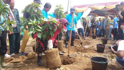 Bupati Samosir Minta Pemerintah Tutup PT TPL dan Aquafarm