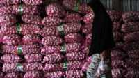 Bebas Corona, 62.000 Ton Bawang Putih China Bakal Masuk RI