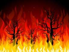 Perbukitan Sarudik Tapteng Terbakar