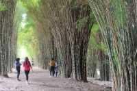 Taman Harmoni, Tempat Pembuangan Sampah Jadi Taman Kota Kebanggaan Surabaya