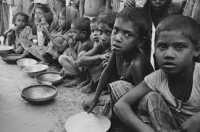 FAO: Kelaparan dan Rawan Pangan Mayoritas Terjadi di Asia