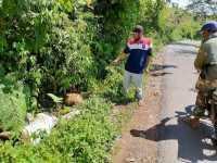 Bangkai Babi Dibuang ke Pinggir Jalan di Saribudolok