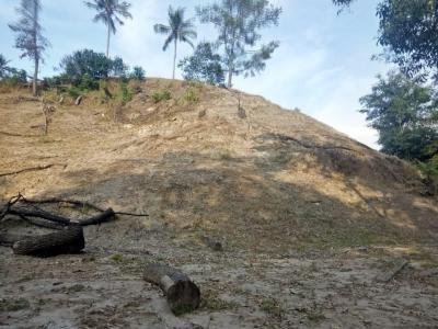 Kemarau, Petani Tunda Penanaman Jagung di Tiga Binanga