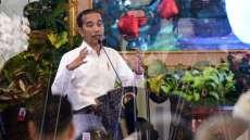 Jokowi Perintahkan Gubernur Se-RI Buat Peta Kesadaran Corona