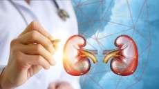 Kenali Dua Penyebab Utama Penyakit Ginjal Kronis