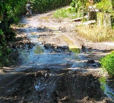 Rusak Berat, Warga Desa Lau Molgap Dairi Dambakan Perbaikan Jalan