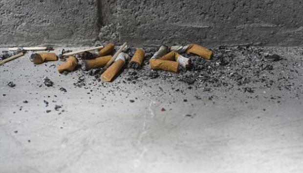 Didenda Rp 6 Juta Gara-gara Buang Dua Puntung Rokok