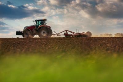 1 Juta Ha Lahan Bakal Dapat Fasilitas Asuransi Pertanian