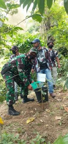 PAC IPK Girsang Sipanganbolon Tanam 1.000 Pohon di Lahan Kritis Perbukitan Parapat